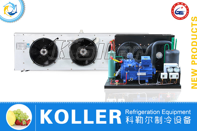 Bock Cold Room Air Cooling Compressor Unit