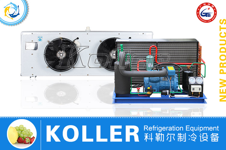Franscold Cold Room Air Cooling Compressor Unit